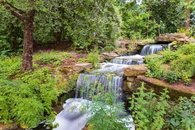 Buckingham Palace Garden waterfall