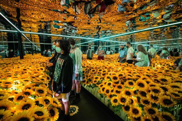 Van Gogh Alive London - Image 4 - Richard Blake
