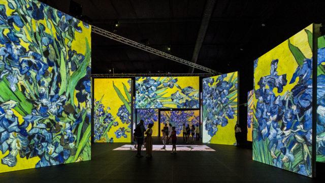 Van Gogh Alive London - Image 6 - Richard Blake